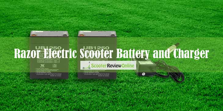 Razor Electric Scooter Battery and Charger